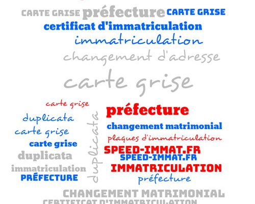 speedimmat-carte-grise-wordwar-web